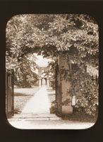 Image of Sassafras-arched gate of the north end of the Mausoleum.  The Observatory is visible in the background.