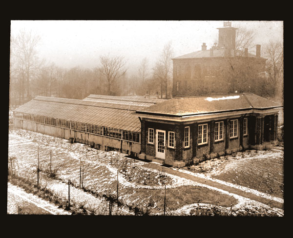 Image of View of laboratory greenhouses with Tower Grove House in background.  See also GPN 82-0136.  Negative available at PHO 2006-0915.  Prints available at PHO 2006-0904 and PHO 2006-0905.
