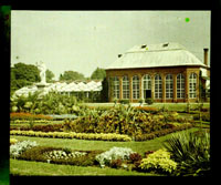 Image of View of Main Conservatory (1868-1916) and Juno.  Plantings in the parterre visible.  Color magic lantern slide.