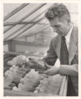 Image of Dr. Hugh Cutler, acting director of the Garden. January 2, 1958.