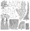 Pylaisia polyantha (Hedw.) Schimp. (Figs. 1–18.)